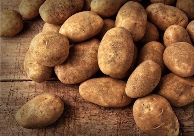 Nguyên lý chọn những thực phẩm đông lạnh đảm bảo chất lượng nhất