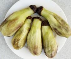 Cà tím Nhật nguyên trái nướng